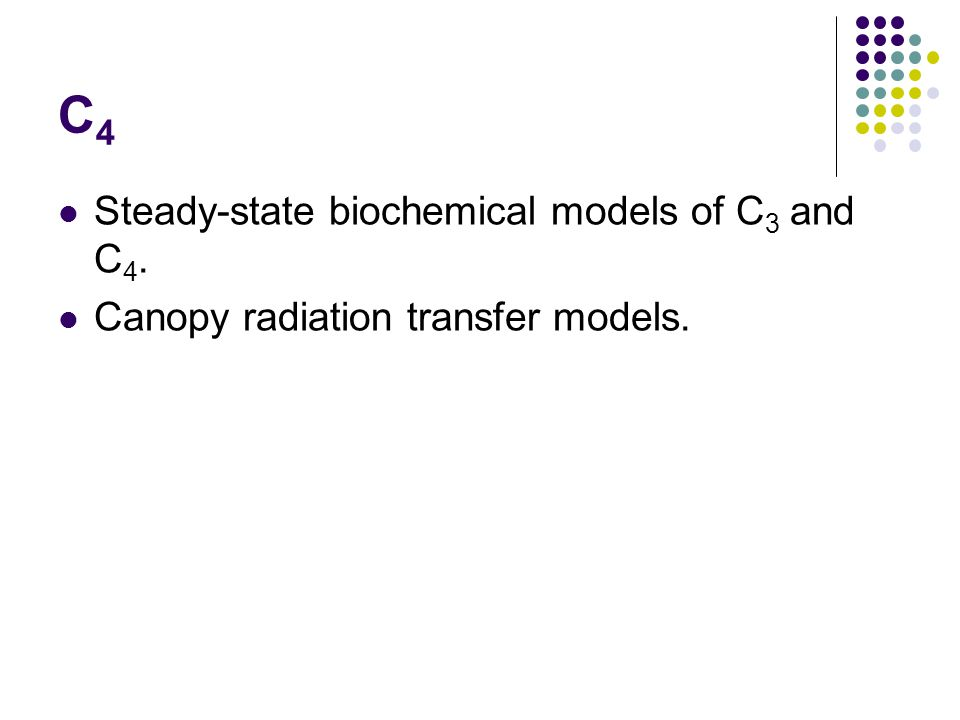 C4C4 Steady-state biochemical models of C 3 and C 4. Canopy radiation transfer models.