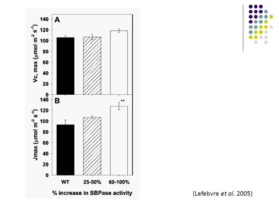 (Lefebvre et al. 2005)