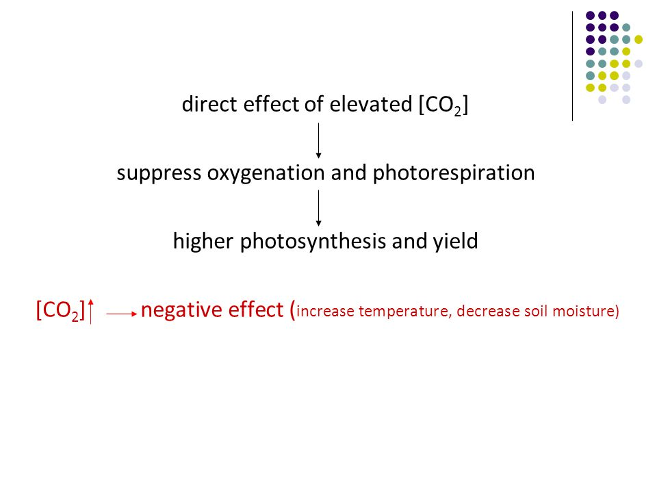 direct effect of elevated [CO 2 ] suppress oxygenation and photorespiration higher photosynthesis and yield [CO 2 ] negative effect ( increase temperature, decrease soil moisture)