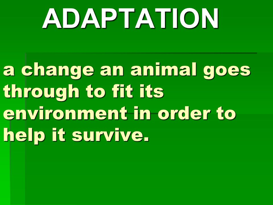 a change an animal goes through to fit its environment in order to help it survive. ADAPTATION