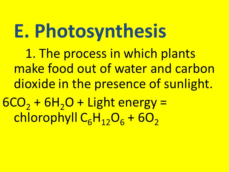E. Photosynthesis 1. The process in which plants make food out of water and carbon dioxide in the presence of sunlight. 6CO 2 + 6H 2 O + Light energy