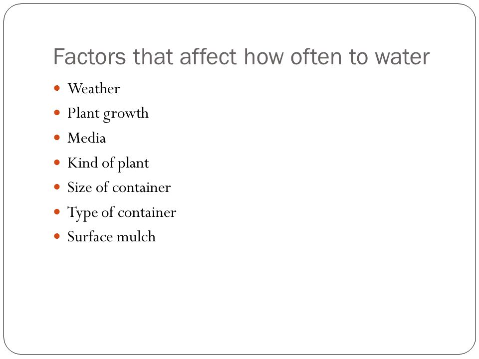Factors that affect how often to water Weather Plant growth Media Kind of plant Size of container Type of container Surface mulch