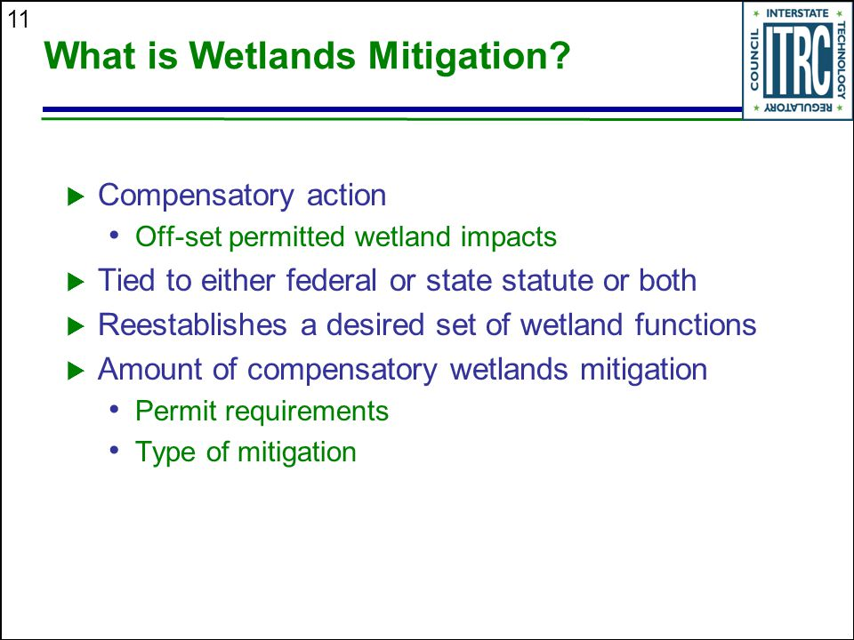 11 What is Wetlands Mitigation.