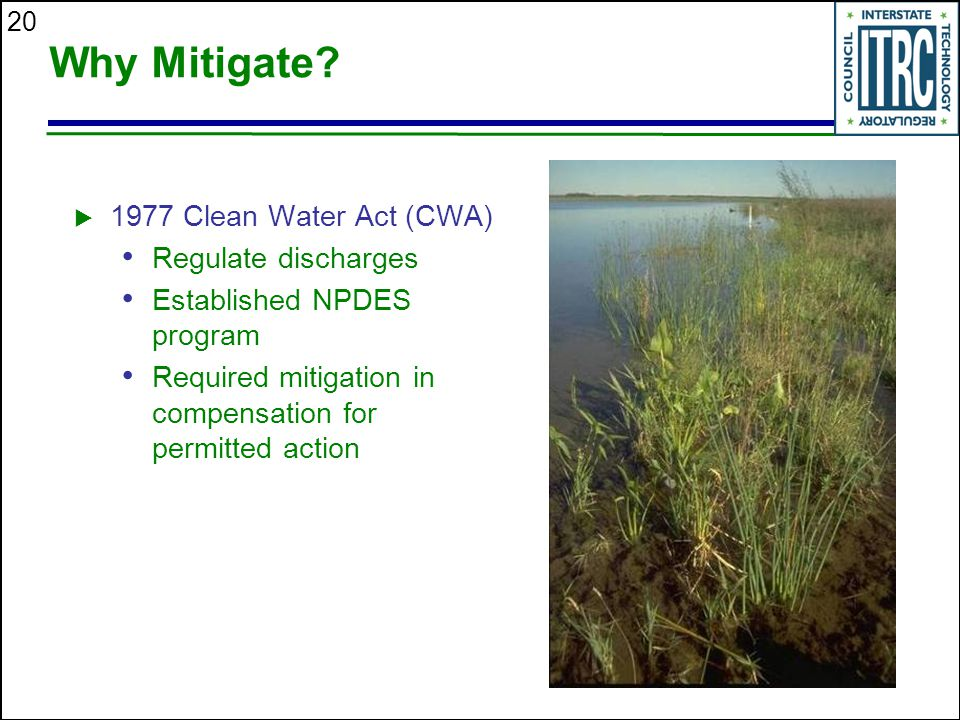 20 Why Mitigate.