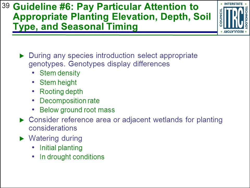 39 Guideline #6: Pay Particular Attention to Appropriate Planting Elevation, Depth, Soil Type, and Seasonal Timing  During any species introduction select appropriate genotypes.