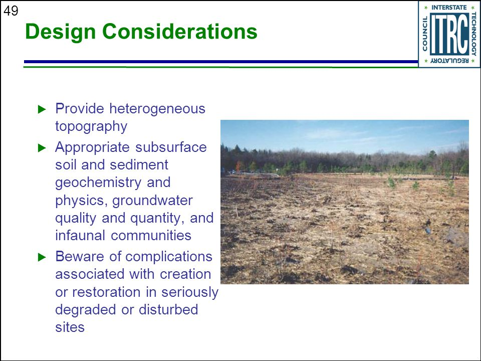 49 Design Considerations  Provide heterogeneous topography  Appropriate subsurface soil and sediment geochemistry and physics, groundwater quality and quantity, and infaunal communities  Beware of complications associated with creation or restoration in seriously degraded or disturbed sites