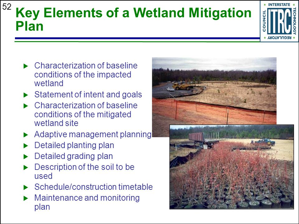 52 Key Elements of a Wetland Mitigation Plan  Characterization of baseline conditions of the impacted wetland  Statement of intent and goals  Characterization of baseline conditions of the mitigated wetland site  Adaptive management planning  Detailed planting plan  Detailed grading plan  Description of the soil to be used  Schedule/construction timetable  Maintenance and monitoring plan