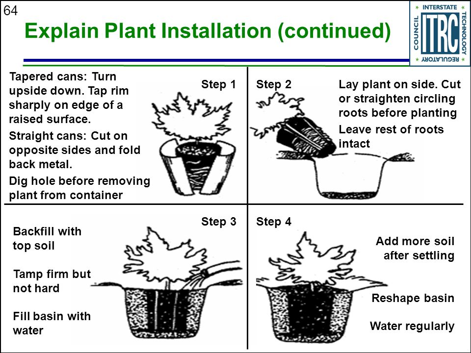 64 Explain Plant Installation (continued) Step 1Step 2 Step 3Step 4 Tapered cans: Turn upside down.