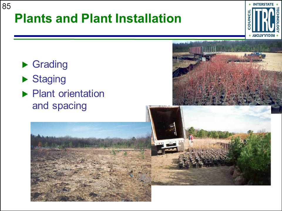 85 Plants and Plant Installation  Grading  Staging  Plant orientation and spacing