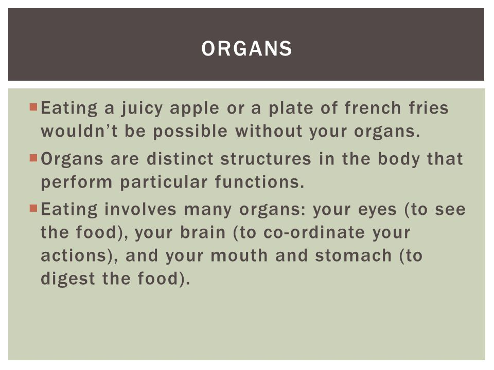  Eating a juicy apple or a plate of french fries wouldn't be possible without your organs.