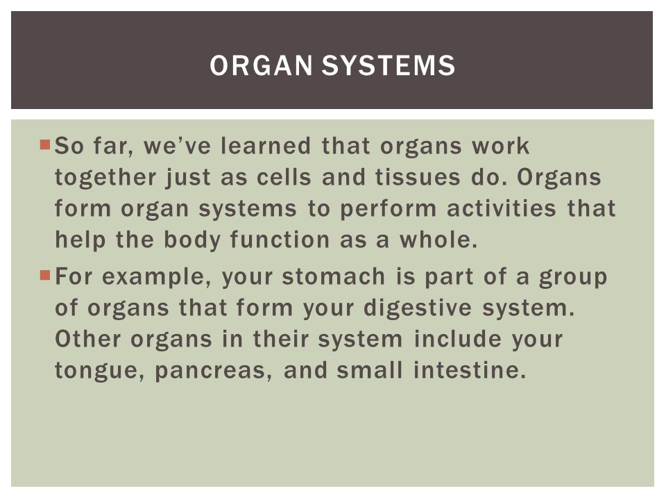  So far, we've learned that organs work together just as cells and tissues do.