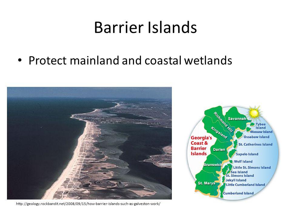 Barrier Islands Protect mainland and coastal wetlands http://geology.rockbandit.net/2008/09/15/how-barrier-islands-such-as-galveston-work/