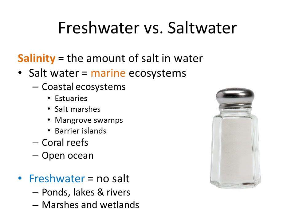 Freshwater vs. Saltwater Salinity = the amount of salt in water Salt water = marine ecosystems – Coastal ecosystems Estuaries Salt marshes Mangrove sw