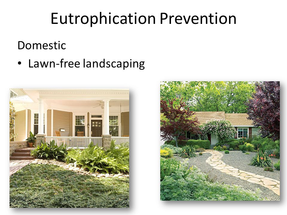 Eutrophication Prevention Domestic Lawn-free landscaping