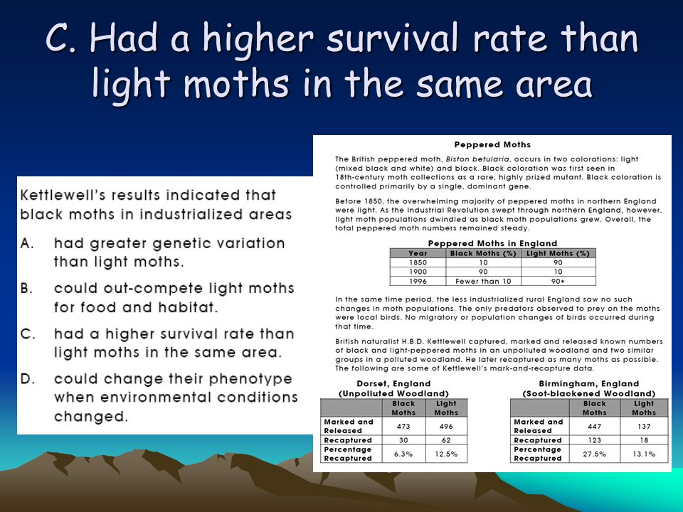 C. Had a higher survival rate than light moths in the same area
