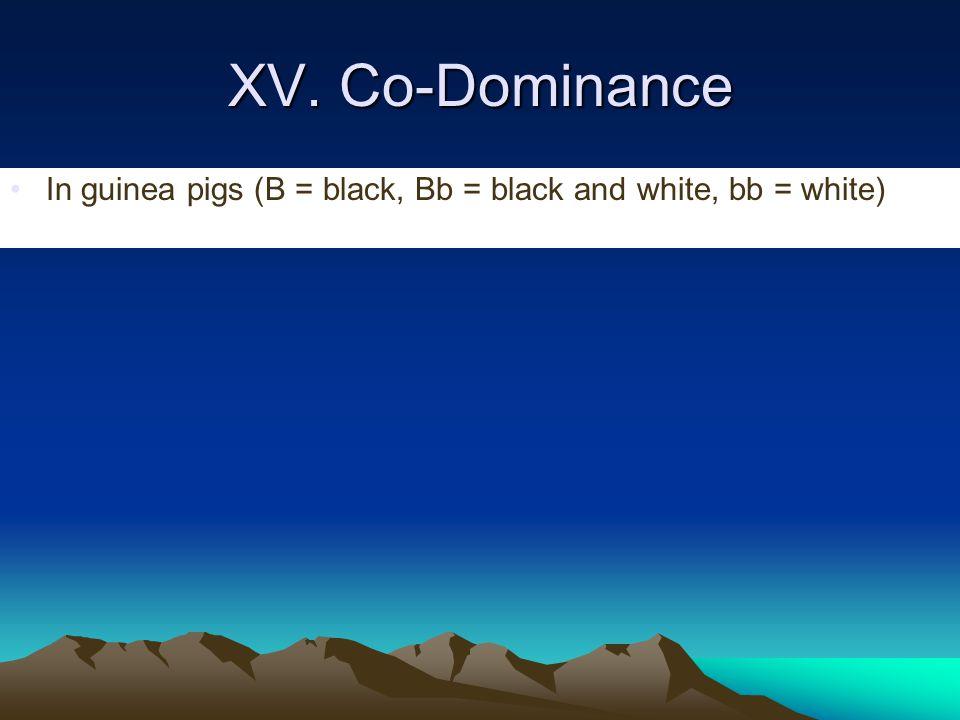 XV. Co-Dominance In guinea pigs (B = black, Bb = black and white, bb = white)