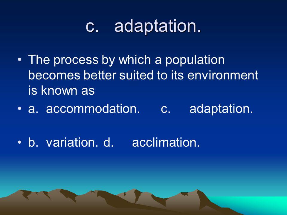 c.adaptation.