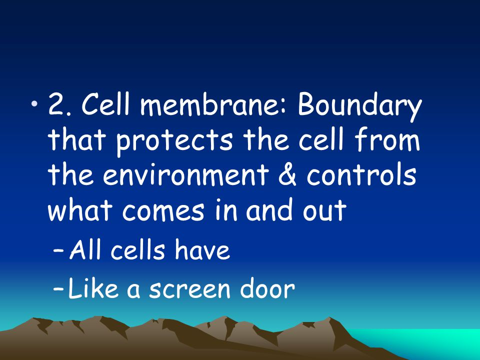 2. Cell membrane: Boundary that protects the cell from the environment & controls what comes in and out –All cells have –Like a screen door