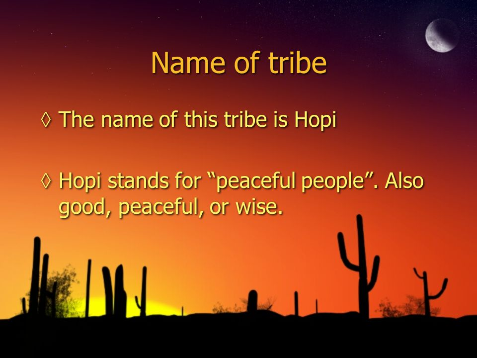 Name of tribe ◊The name of this tribe is Hopi ◊Hopi stands for peaceful people .