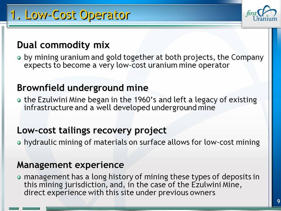 10 $ 33 Ezulwini Mine $ 376 Gold (per oz.) U 3 O 8 (per lb.) Mine Waste Solutions Life of Mine Total Co-Product Cash Costs $ 22$ 347