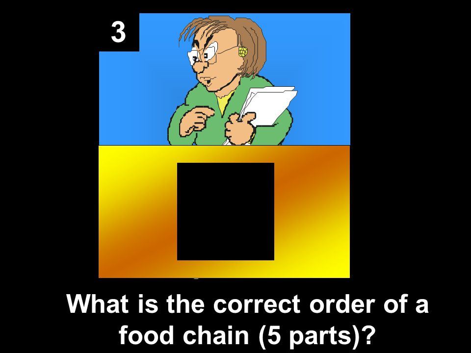 3 What is the correct order of a food chain (5 parts)?