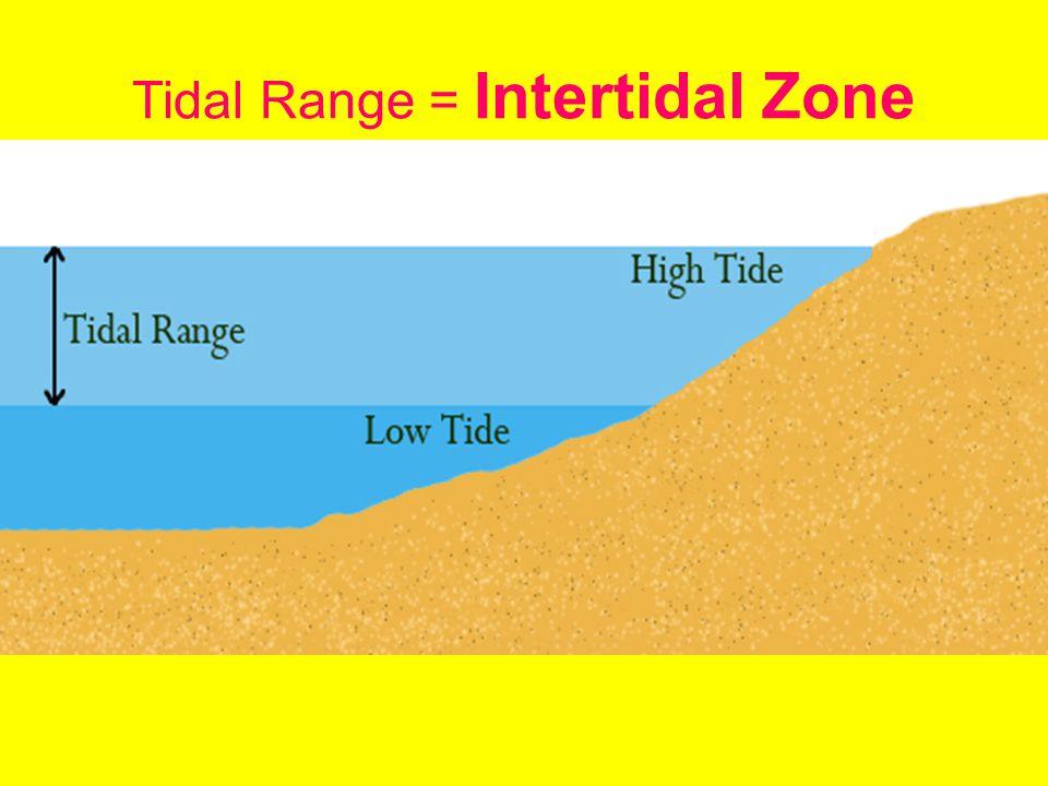 © 2011 Pearson Education, Inc. Bay of Fundy – World's Largest Tidal Range
