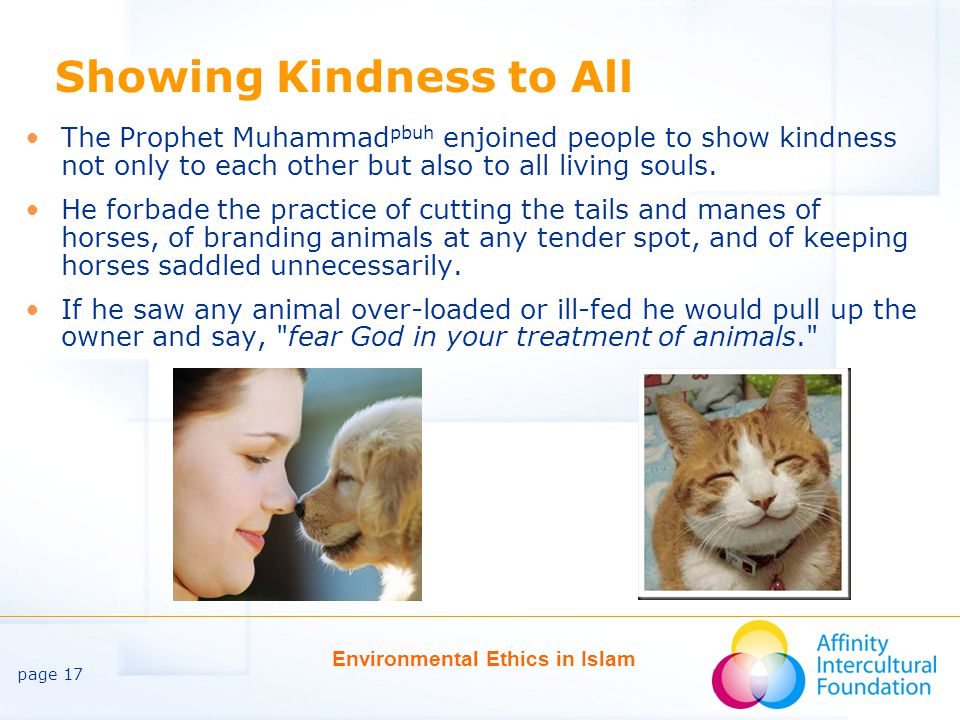 page 17 Environmental Ethics in Islam Showing Kindness to All The Prophet Muhammad pbuh enjoined people to show kindness not only to each other but also to all living souls.