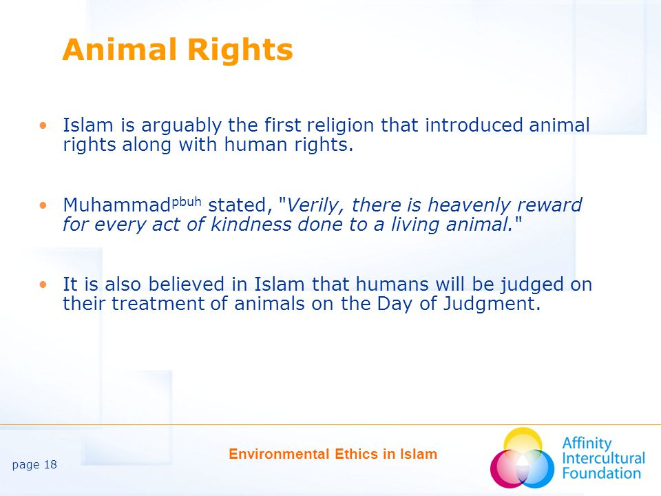 page 18 Environmental Ethics in Islam Animal Rights Islam is arguably the first religion that introduced animal rights along with human rights.