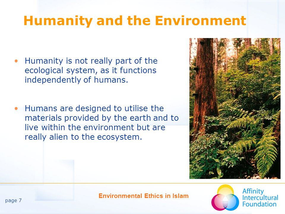 page 7 Environmental Ethics in Islam Humanity and the Environment Humanity is not really part of the ecological system, as it functions independently of humans.