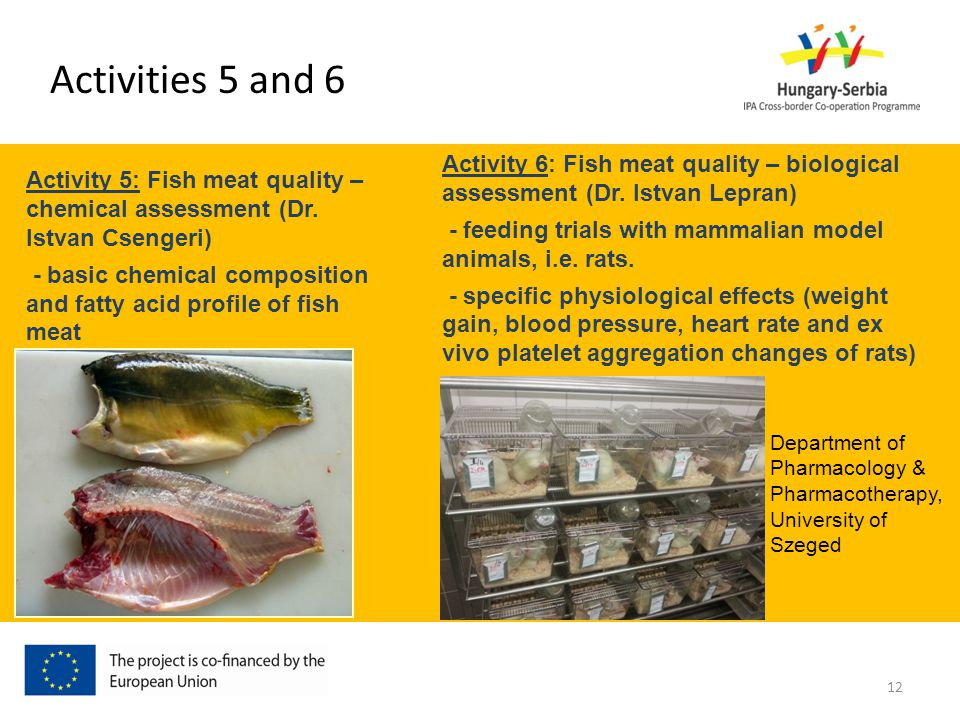 Activity 5: Fish meat quality – chemical assessment (Dr. Istvan Csengeri) - basic chemical composition and fatty acid profile of fish meat Activity 6: