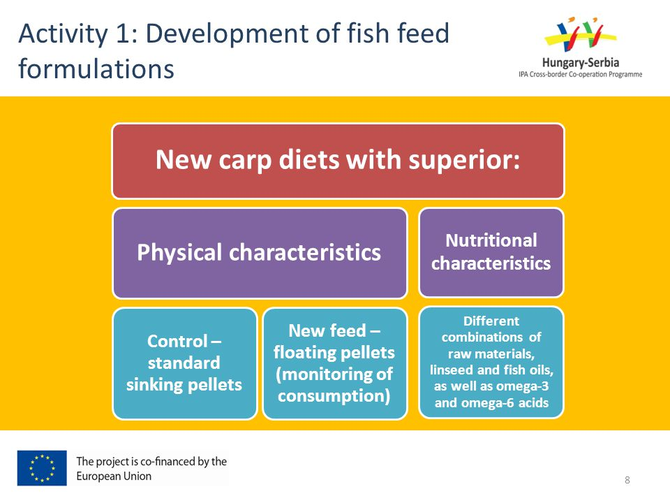 New carp diets with superior: Physical characteristics Control – standard sinking pellets New feed – floating pellets (monitoring of consumption) Nutr