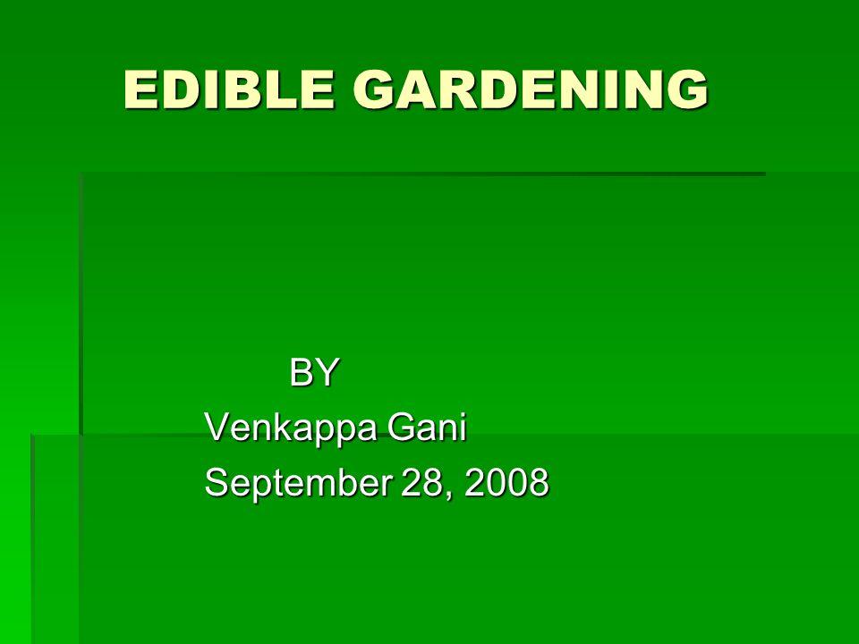 EDIBLE GARDENING EDIBLE GARDENING BY BY Venkappa Gani Venkappa Gani September 28, 2008 September 28, 2008