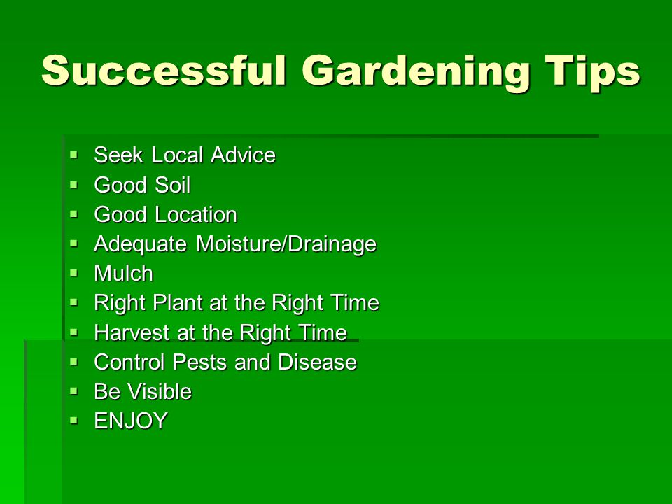 Successful Gardening Tips  Seek Local Advice  Good Soil  Good Location  Adequate Moisture/Drainage  Mulch  Right Plant at the Right Time  Harvest at the Right Time  Control Pests and Disease  Be Visible  ENJOY