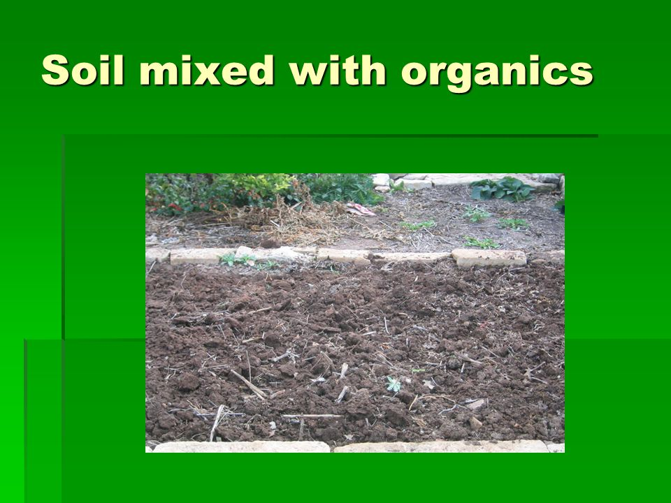 Soil mixed with organics