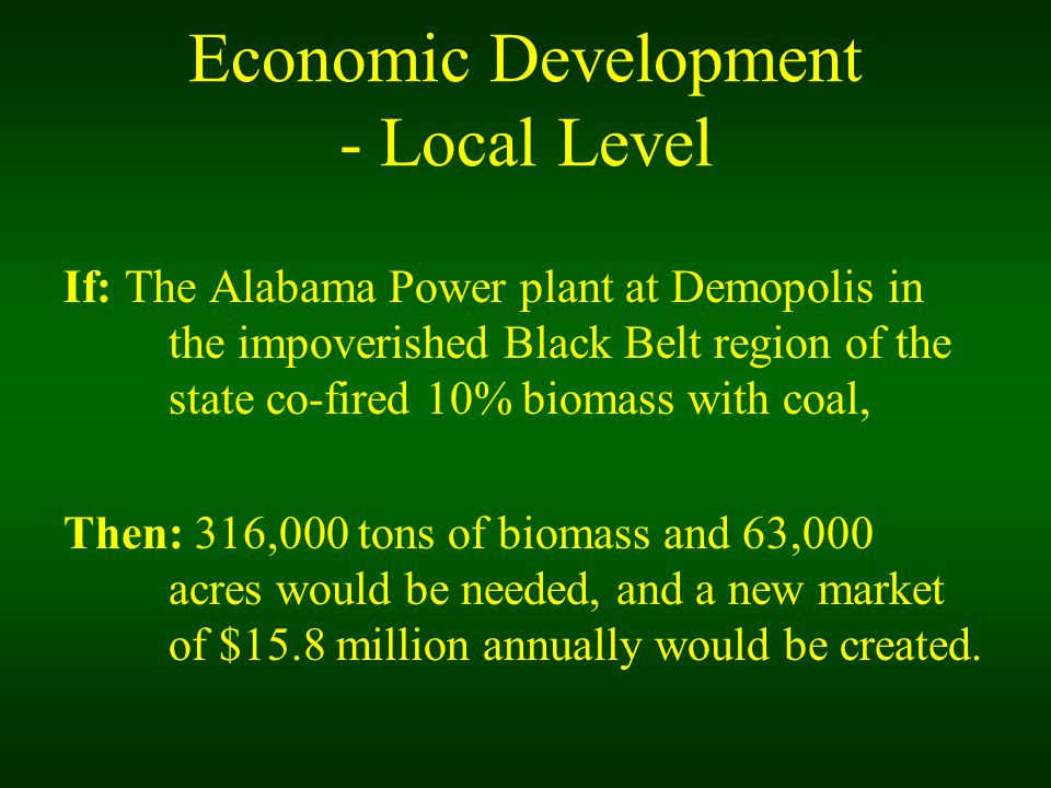 Economic Development - Local Level If: The Alabama Power plant at Demopolis in the impoverished Black Belt region of the state co-fired 10% biomass with coal, Then: 316,000 tons of biomass and 63,000 acres would be needed, and a new market of $15.8 million annually would be created.
