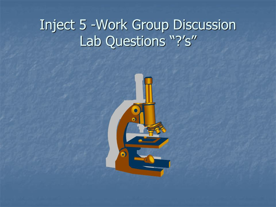 Inject 5 -Work Group Discussion Lab Questions 's