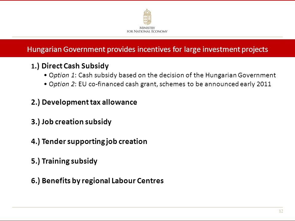 12 1.) Direct Cash Subsidy Option 1: Cash subsidy based on the decision of the Hungarian Government Option 2: EU co-financed cash grant, schemes to be
