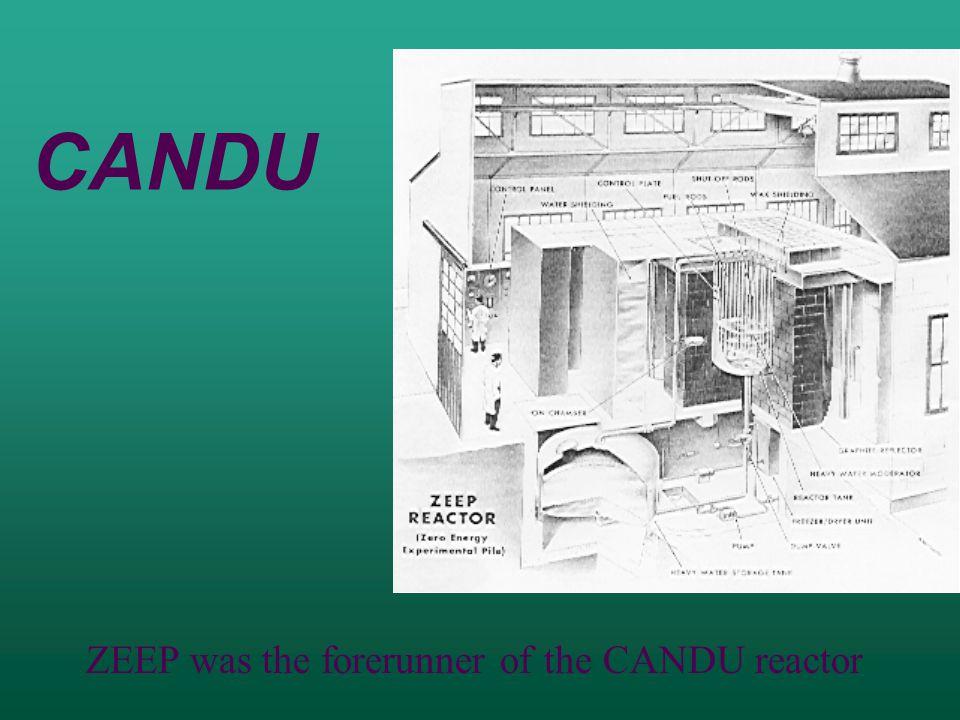 CANDU ZEEP was the forerunner of the CANDU reactor