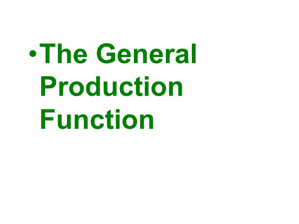 The General Production Function
