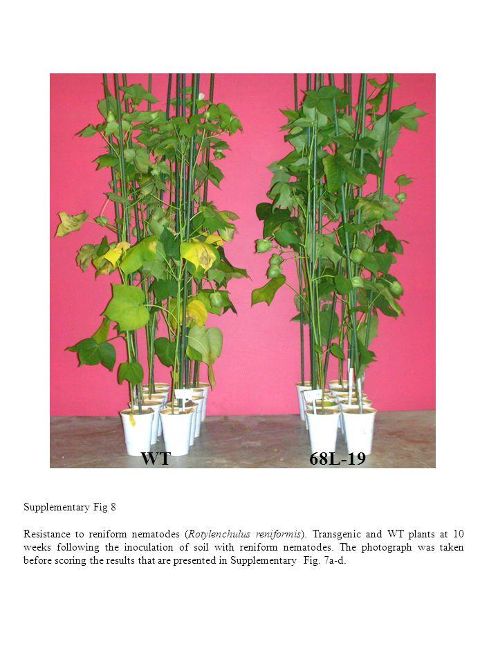 WT68L-19 Supplementary Fig 8 Resistance to reniform nematodes (Rotylenchulus reniformis).