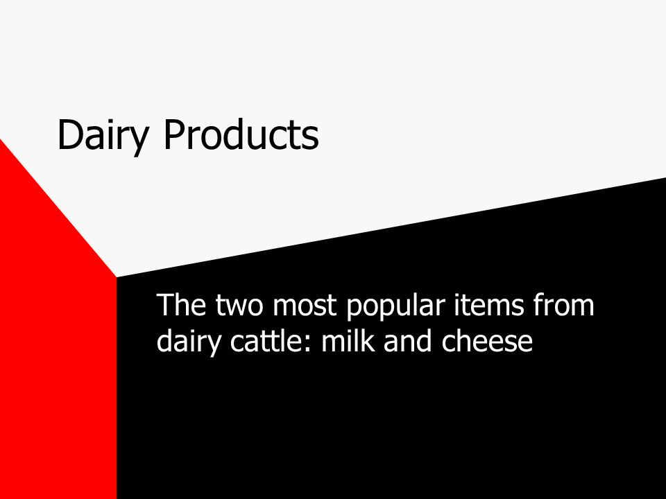 Dairy Products The two most popular items from dairy cattle: milk and cheese