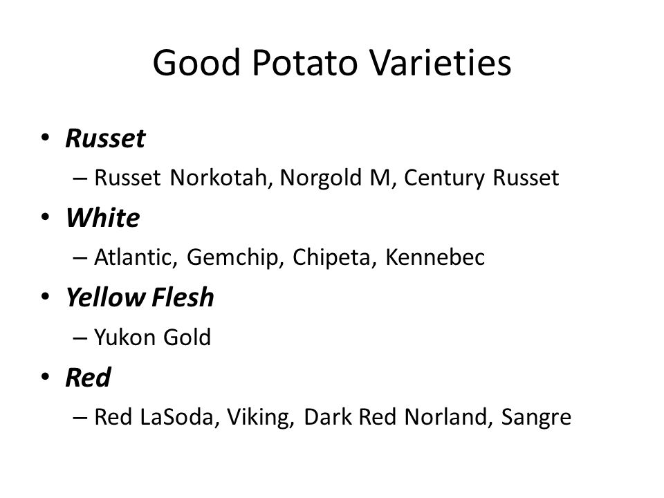 Good Potato Varieties Russet – Russet Norkotah, Norgold M, Century Russet White – Atlantic, Gemchip, Chipeta, Kennebec Yellow Flesh – Yukon Gold Red – Red LaSoda, Viking, Dark Red Norland, Sangre