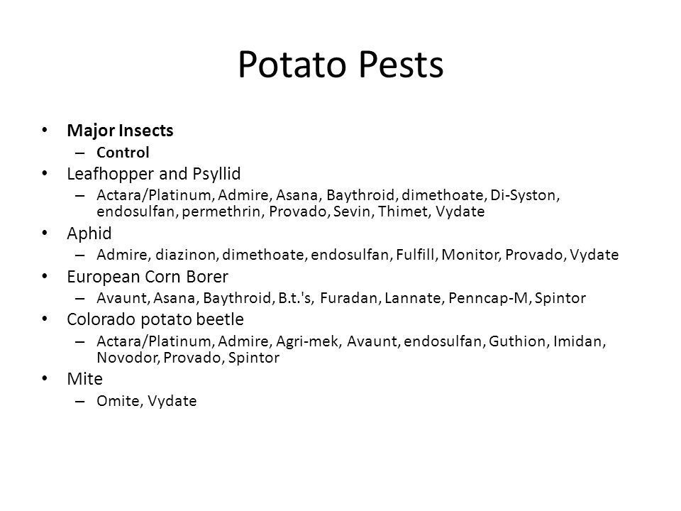 Potato Pests Major Insects – Control Leafhopper and Psyllid – Actara/Platinum, Admire, Asana, Baythroid, dimethoate, Di-Syston, endosulfan, permethrin, Provado, Sevin, Thimet, Vydate Aphid – Admire, diazinon, dimethoate, endosulfan, Fulfill, Monitor, Provado, Vydate European Corn Borer – Avaunt, Asana, Baythroid, B.t. s, Furadan, Lannate, Penncap-M, Spintor Colorado potato beetle – Actara/Platinum, Admire, Agri-mek, Avaunt, endosulfan, Guthion, Imidan, Novodor, Provado, Spintor Mite – Omite, Vydate