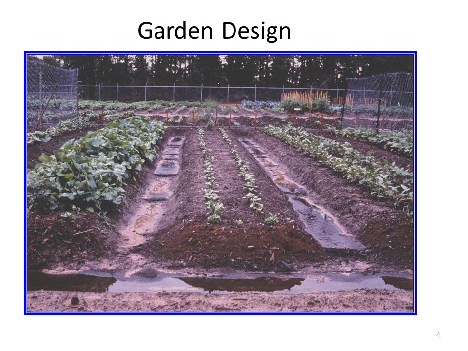 4 Garden Design