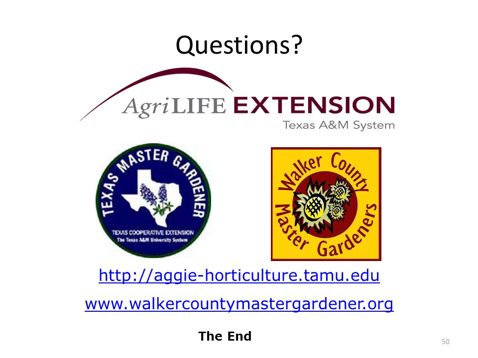 Questions 50 The End http://aggie-horticulture.tamu.edu www.walkercountymastergardener.org
