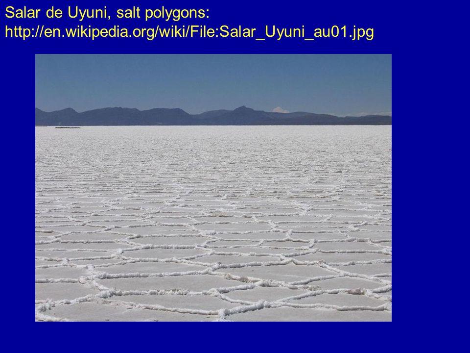 Salar de Uyuni, salt polygons: http://en.wikipedia.org/wiki/File:Salar_Uyuni_au01.jpg