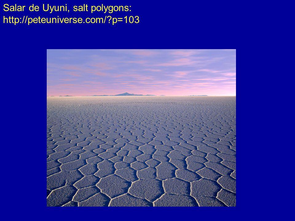 Salar de Uyuni, salt polygons: http://peteuniverse.com/ p=103