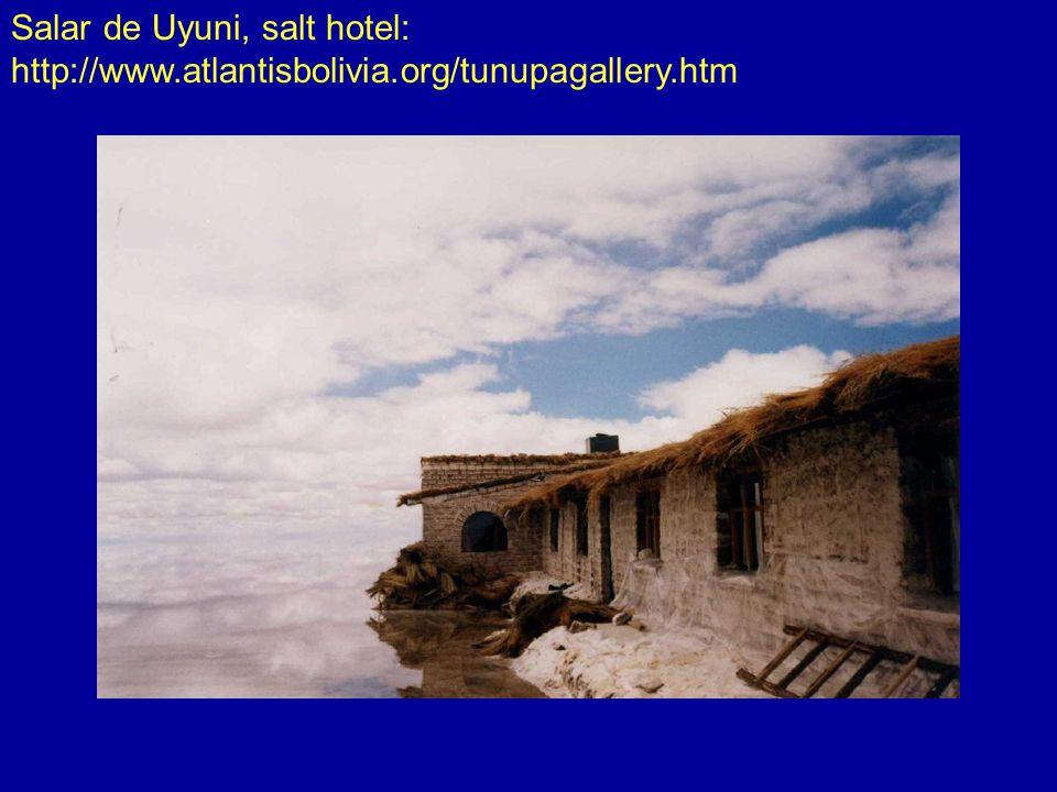 Salar de Uyuni, salt hotel: http://www.atlantisbolivia.org/tunupagallery.htm