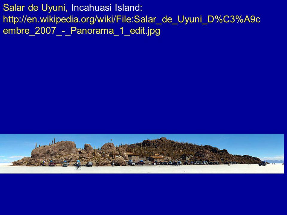 Salar de Uyuni, Incahuasi Island: http://en.wikipedia.org/wiki/File:Salar_de_Uyuni_D%C3%A9c embre_2007_-_Panorama_1_edit.jpg