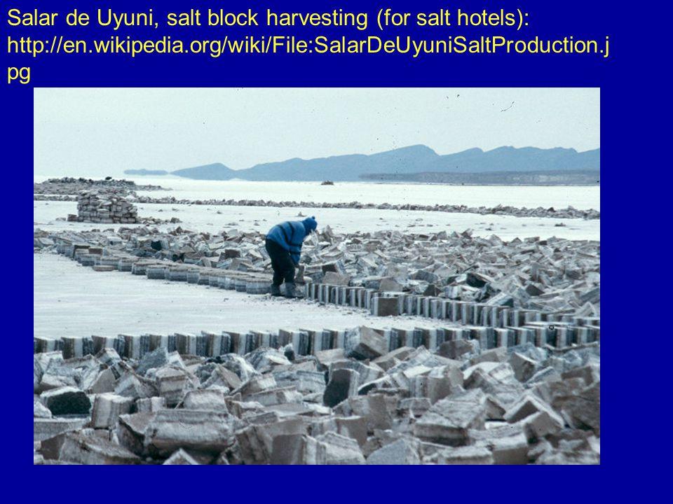 Salar de Uyuni, salt block harvesting (for salt hotels): http://en.wikipedia.org/wiki/File:SalarDeUyuniSaltProduction.j pg